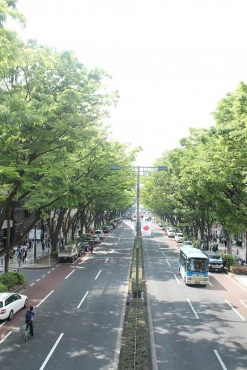 初夏じゃん、東京。【表参道】 画像